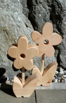 Zirben Blume